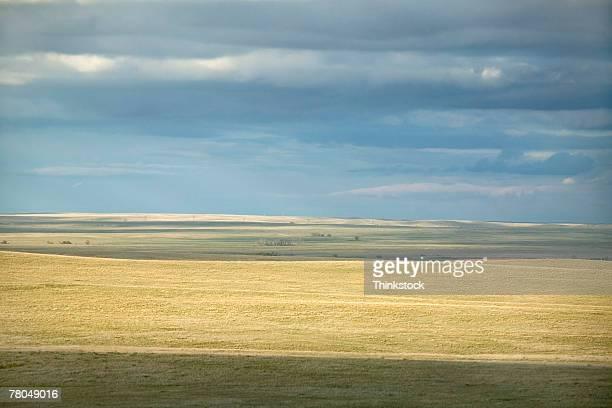Prairie landscape in South Dakota