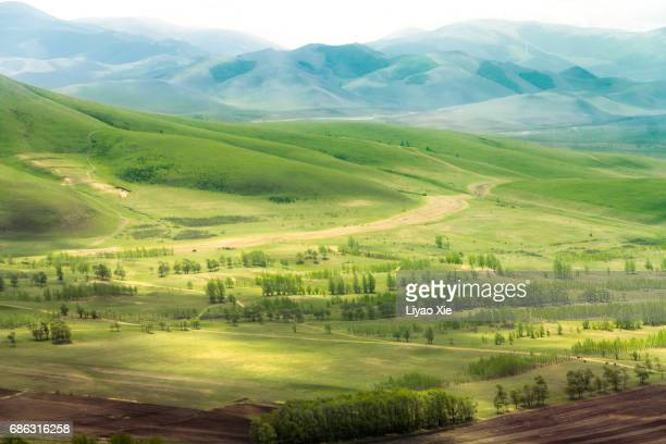 prairie - liyao xie stock pictures, royalty-free photos & images