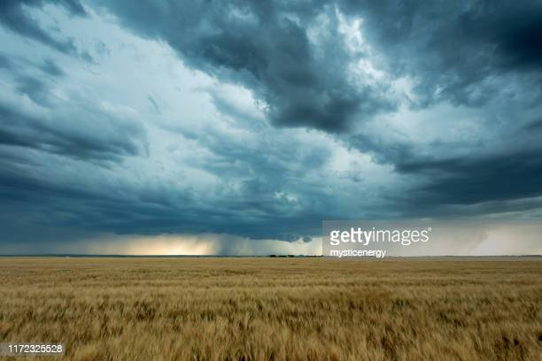 prairie storm saskatchewan canada - moody sky stock pictures, royalty-free photos & images