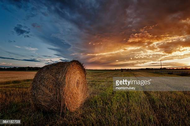prairie sunset - canadian prairies stock photos and pictures