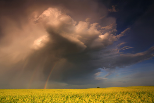 Prairie Thunderstorm in the American Midwest 157431482