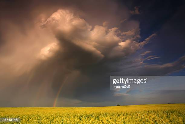 prairie thunderstorm in the american midwest - prairie stock pictures, royalty-free photos & images