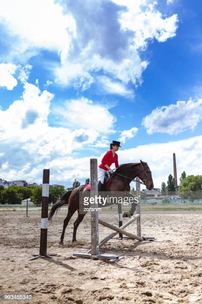 prancing horse jumping hurdle - equestrian show jumping stock pictures, royalty-free photos & images