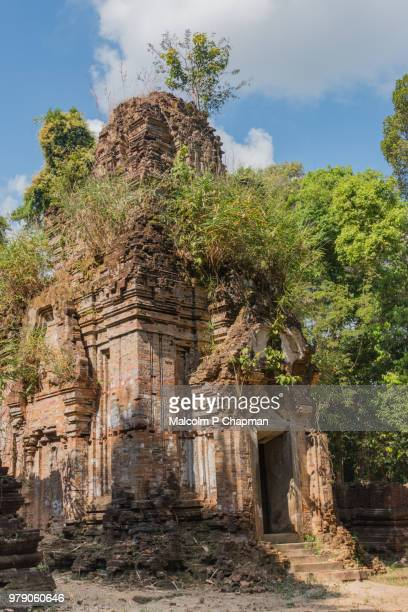 "prasat damrei krap temple (krabei krab temple), 7th century remains, phnom kulen, cambodia - cambodia ""malcolm p chapman"" or ""malcolm chapman"" stock pictures, royalty-free photos & images"