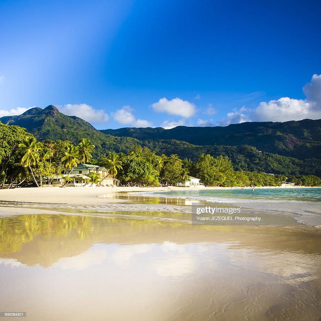 Praslin Island : Photo