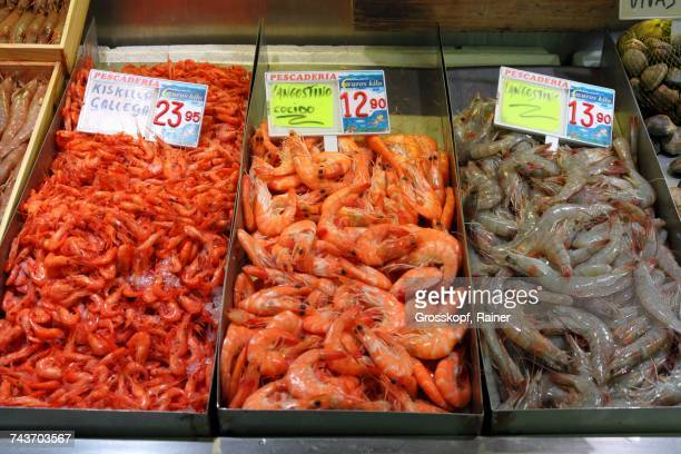 prawns from galicia and langoustines (raw and cooked) at the fish market in bilbao, basque country, spain - rainer grosskopf stock pictures, royalty-free photos & images