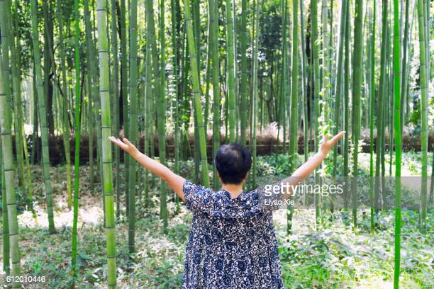 pray in front of bamboo forest - liyao xie photos et images de collection