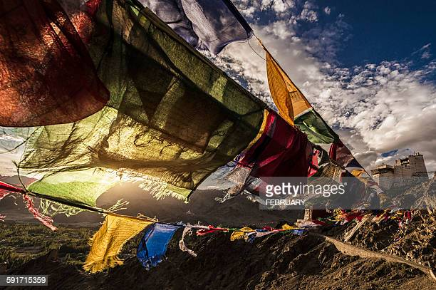 Prayer flag and Leh Palace in Summer