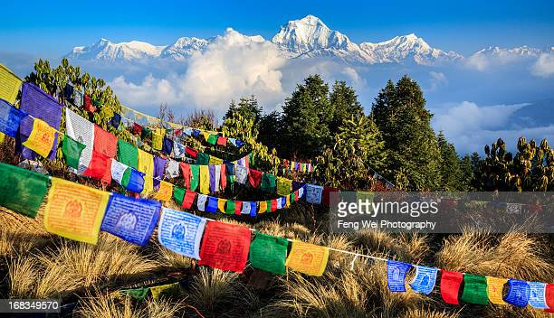prayer flags and dhaulagiri, annapurna, nepal - annapurna conservation area stock photos and pictures