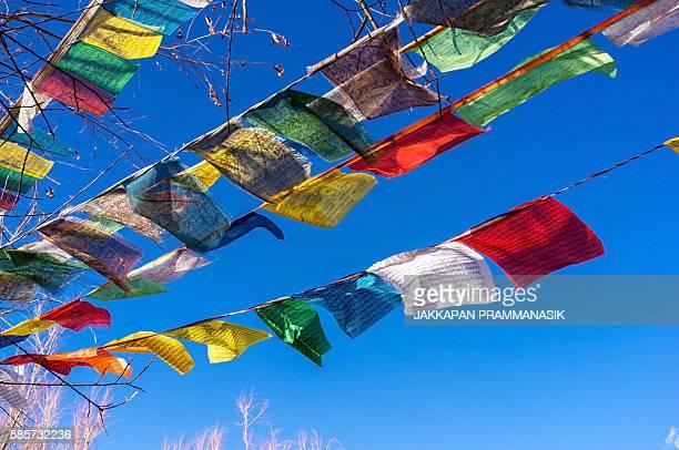 prayer flags in songzanlin monastery - songzanlin monastery stockfoto's en -beelden