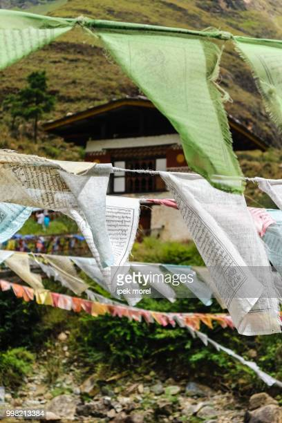 prayer flags on iron bridge of tamchog lhakhang - ipek morel stock pictures, royalty-free photos & images
