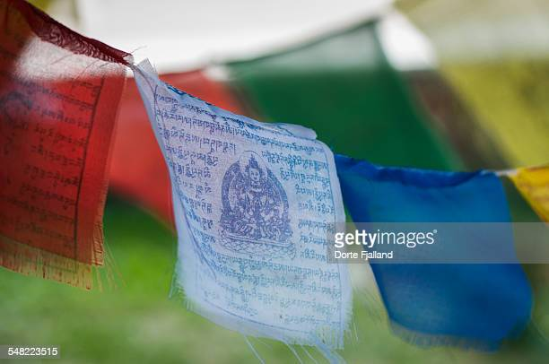 prayer flags - dorte fjalland stock pictures, royalty-free photos & images