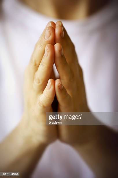 praying hands with white background - praying hands stock pictures, royalty-free photos & images