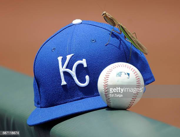 Praying Mantis climbs on a cap belonging to a Kansas City Royals player during a game against the Toronto Blue Jays in the second inning at Kauffman...