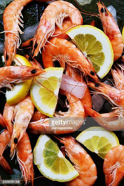Pre cooked shrimps with lemon