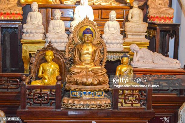 precious golden and juweled buddha statues in the gangaramaya temple, colombo, sri lanka, asia - imagebook stock pictures, royalty-free photos & images