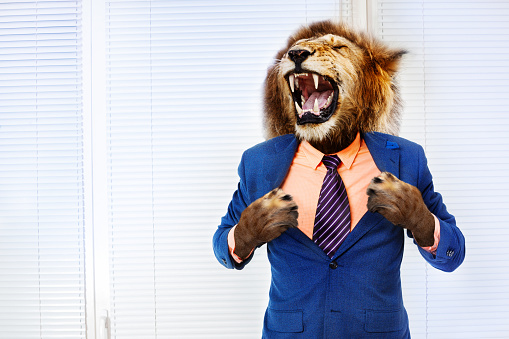 Predator angry boss concept man with lion head 1135295716
