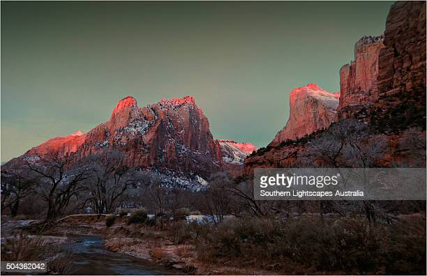 pre-dawn light in zion national park, utah, usa. - pre season bildbanksfoton och bilder