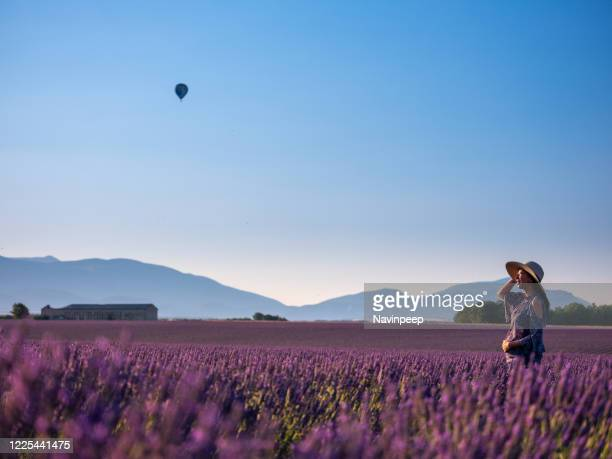 pregnant asian woman in lavender field, looking at hot air balloon, provence, france - マタニティウェア ストックフォトと画像