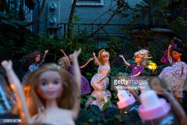 Pregnant Barbie dolls stand around Barbie Pond in celebration of Labor Day The pond is in the front yard of a house on Q street and changes every...