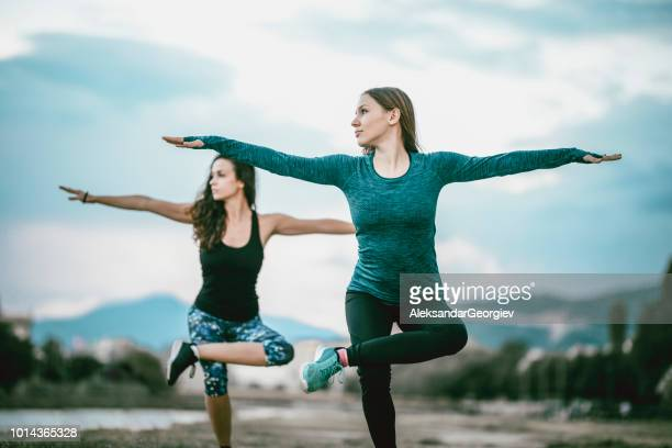 pregnant female staying in shape with the help of fitness instructor - yogi stock photos and pictures