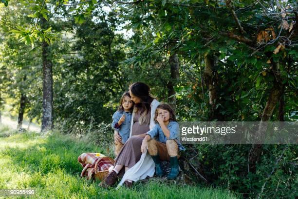 pregnant mother with two kids having a picnic in the countryside - famiglia con due figli foto e immagini stock