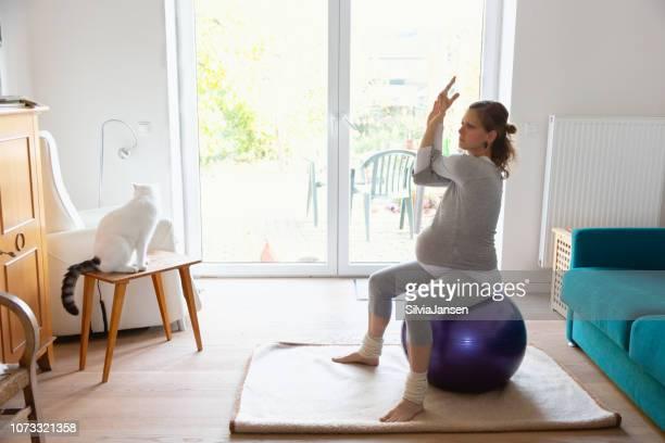 schwangere frau das training zu hause mit fitness-ball zusammen mit katze - turnen stock-fotos und bilder
