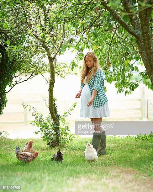 Pregnant woman feeding chickens.