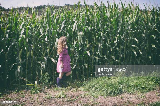 A pregnant woman is at cornfield