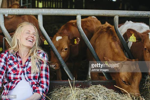 pregnant woman on farm - female animal stock pictures, royalty-free photos & images