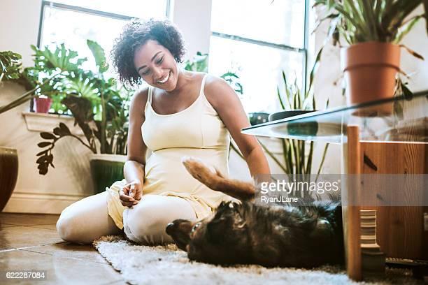 pregnant woman playing with dog - gravidas africanas imagens e fotografias de stock