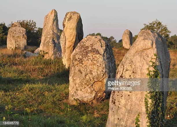 Prehistoric alignments in dawn