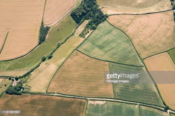 Prehistoric farms Stogumber Somerset 2018 Artist Historic England Staff Photographer