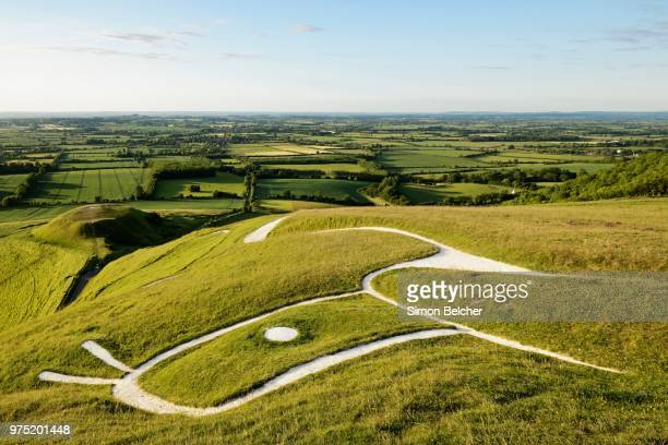 a prehistoric hill figure scoured into the side of a hill, uffington white horse, oxfordshire, england, united kingdom - uffington white horse stock pictures, royalty-free photos & images
