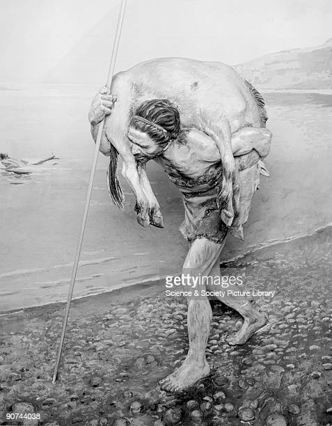 Prehistoric man carrying an animal which he has killed with his spear On the lake in the background a family use a log as a raft Diorama from the...