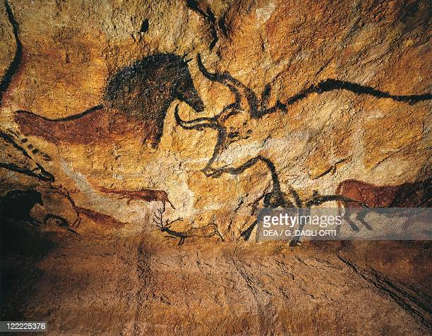Prehistory France Upper Paleolithic Perigordian Reconstruction of the rock paintings of Lascaux caves Bulls