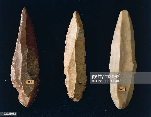 Prehistory Italy Marche region Paleolithic Polished flint spear point