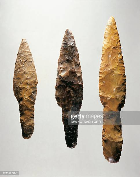 Prehistory Sweden Neolithic Flint spear points from Scania