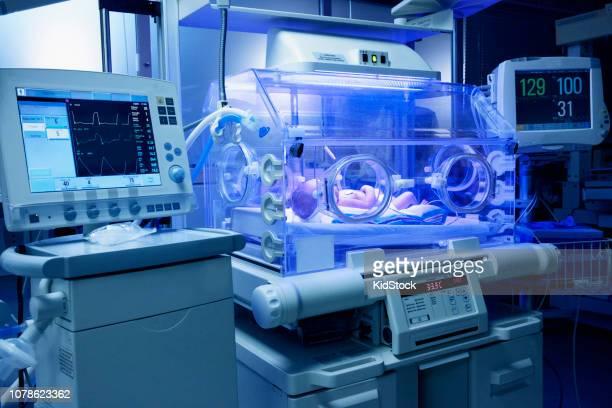 Premature baby in intensive care unit