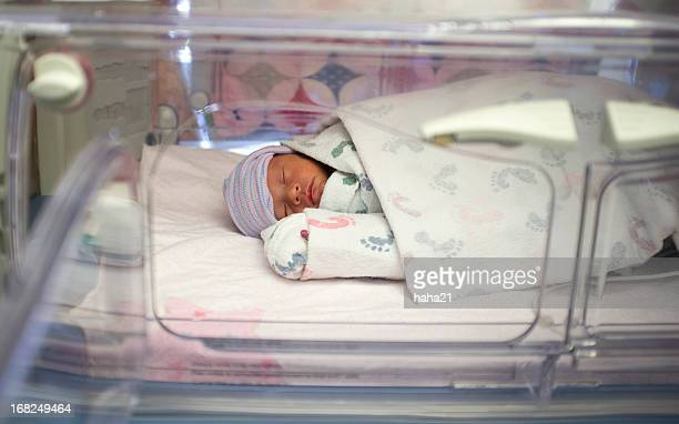 Premature biracial baby in hospital incubator