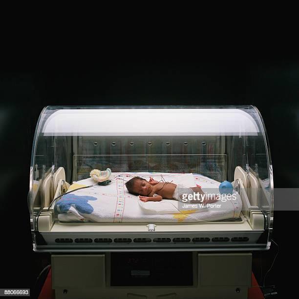 Premature Infant in Incubator