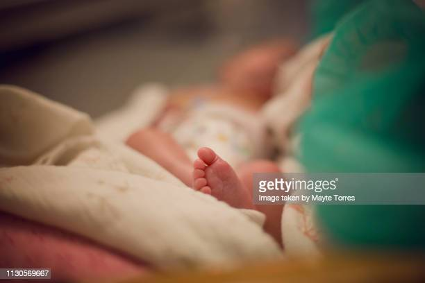 premature newborn foot while laying down - zakenman stock pictures, royalty-free photos & images
