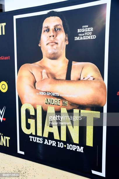 Premiere Of HBO's 'Andre The Giant' at The Cinerama Dome on March 29 2018 in Los Angeles California