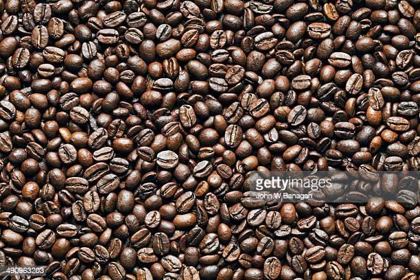 Premium coffee beans