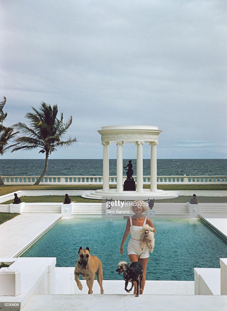 CZ's Dogs : News Photo