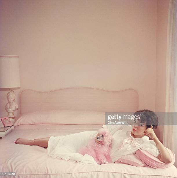 Premium Rates Apply Film star Joan Collins relaxes with her pink poodle on her pink bed
