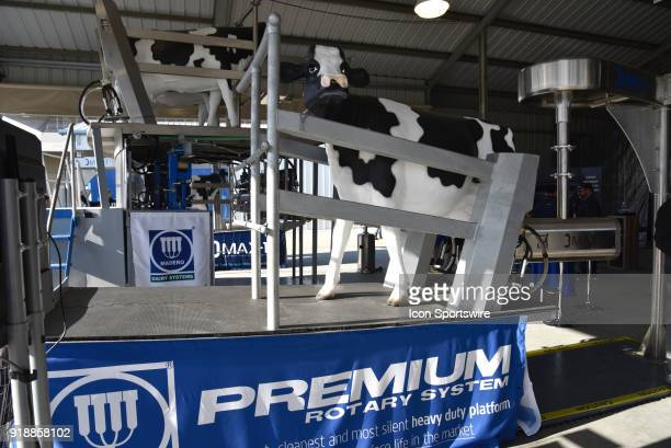 Premium Rotary milking system with life size cows on display during the 51st World Ag Expo on February 13 2018 at the International AgriCenter in...