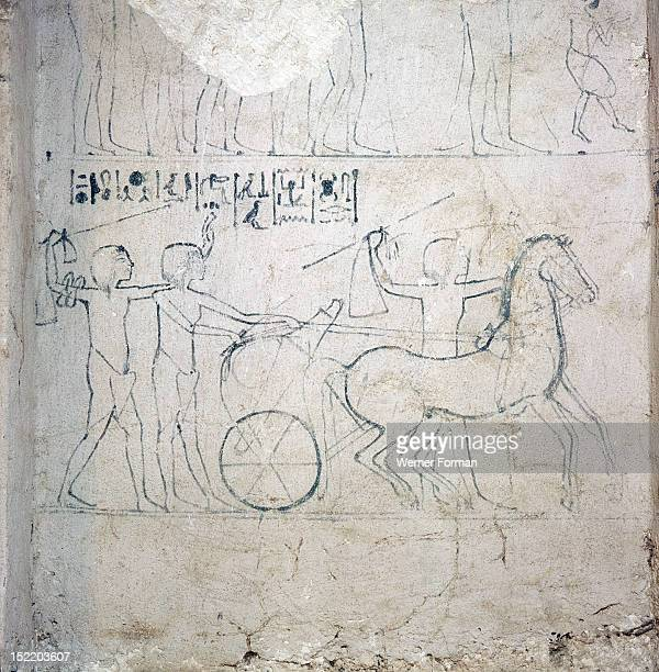 A preparatory drawing for a tomb relief depicting a horse and chariot In tomb 9 of Mahu the police chief and a courtier of Akhenaten Egypt Ancient...