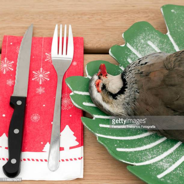 preparing a roasted partridge - the twelve days of christmas stock pictures, royalty-free photos & images
