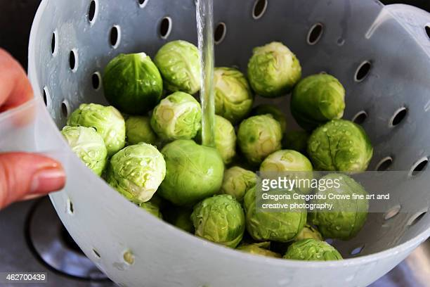 preparing brussels sprouts - gregoria gregoriou crowe fine art and creative photography. stock pictures, royalty-free photos & images